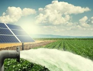 Solar Pumping for Irrigation & Agriculture